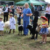 MID-SOMERSET SHOW SECURES ITS FUTURE