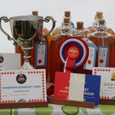 LOCAL CHAMPIONS AT MID-SOMERSET SHOW