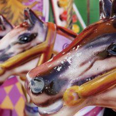 Horse-ride-2